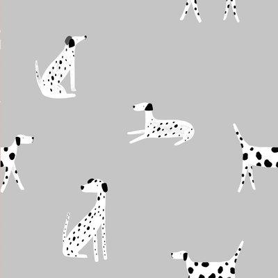 Katia- Home Detective Dalmatians SOFT-SHELL € 20,- p/m
