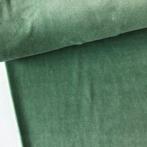 C. Pauli - Green Bay Nicky Velours 25,50 p/m GOTS