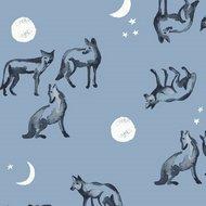 coyote moon - monaluna